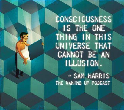sam harris consciousness quote